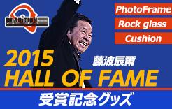藤波辰爾「2015 HALL OF FAME 受賞記念グッズ」